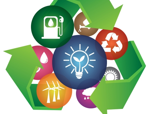 Exploring Sustainable Business Models in a Circular Economy