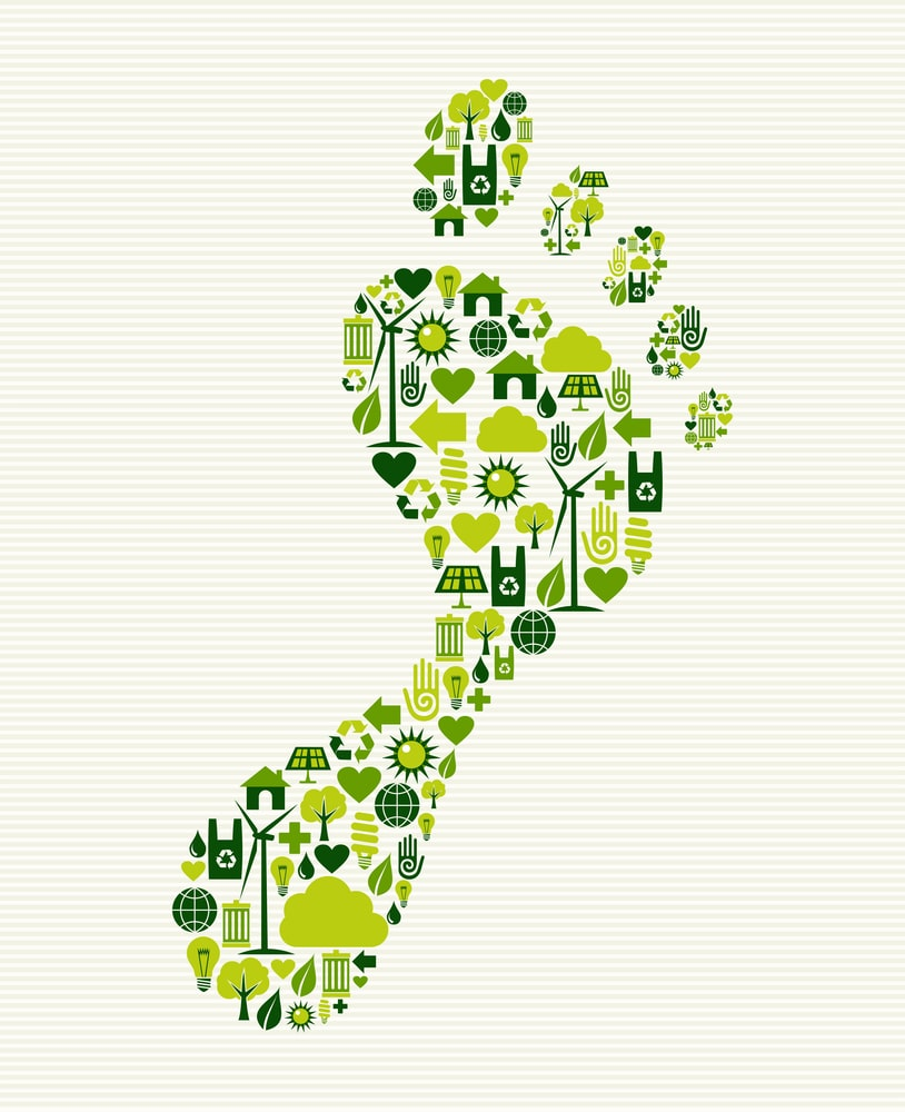 business sustainability Business and environmental sustainability certificate blend your business mind with a new environmental consciousness at suny empire state college.
