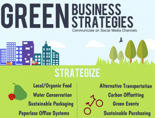 The Value of  Infographics in Sustainability Communications